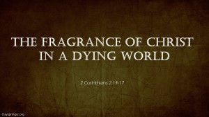 The Fragrance of Christ in a Dying world pic